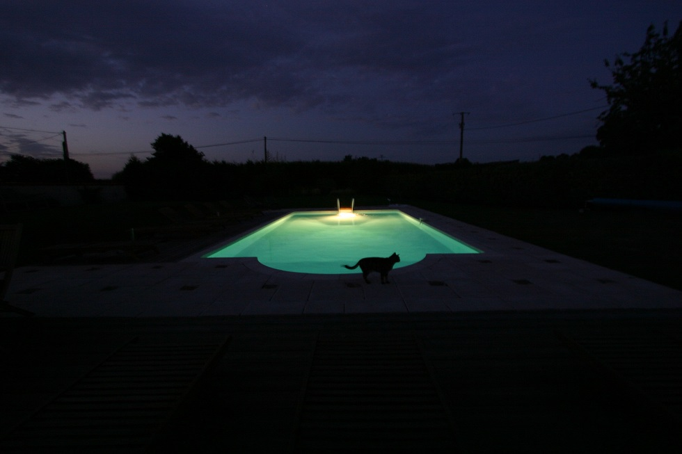 Swimming Pool at Night 980