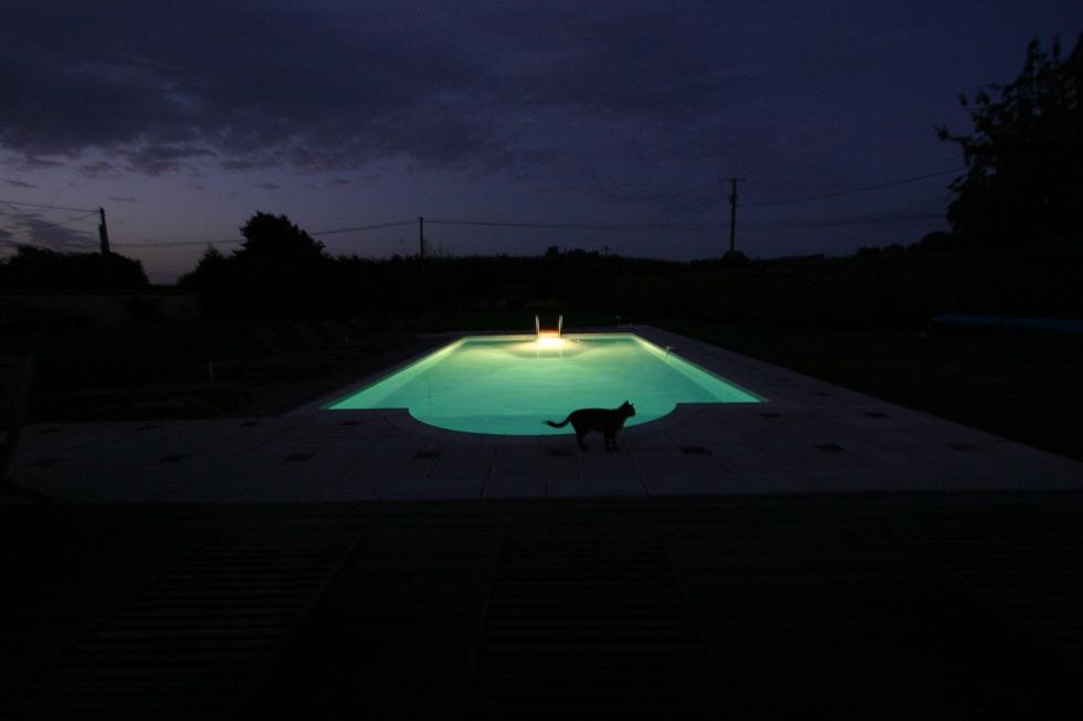 Swimming Pool at Night 980